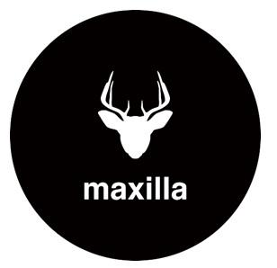 Maxilla